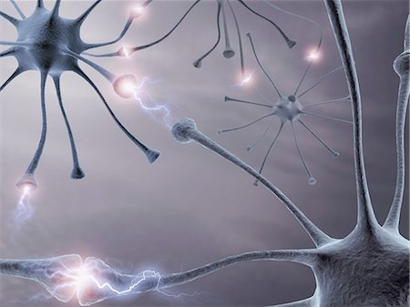 synapse - Neural network, computer artwork. Stock Photo - Premium Royalty-Free, Code: 679-06780974