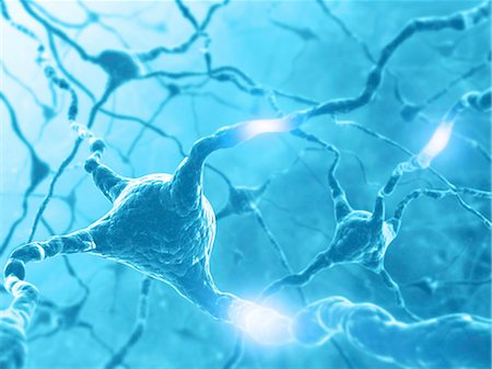 synapse - Neural network, computer artwork. Stock Photo - Premium Royalty-Free, Code: 679-06780975