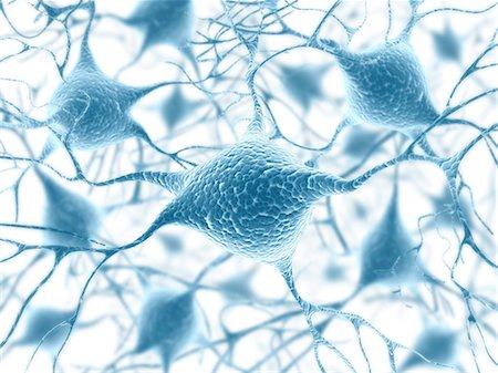 synapse - Neural network, computer artwork. Stock Photo - Premium Royalty-Free, Code: 679-06780976