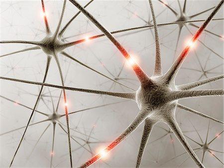 synapse - Neural network, computer artwork. Stock Photo - Premium Royalty-Free, Code: 679-06780972