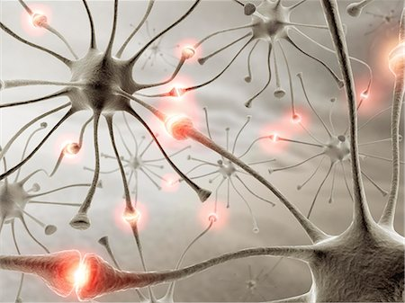synapse - Neural network, computer artwork. Stock Photo - Premium Royalty-Free, Code: 679-06780973