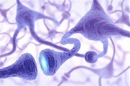 synapse - Neural network, computer artwork. Stock Photo - Premium Royalty-Free, Code: 679-06780987