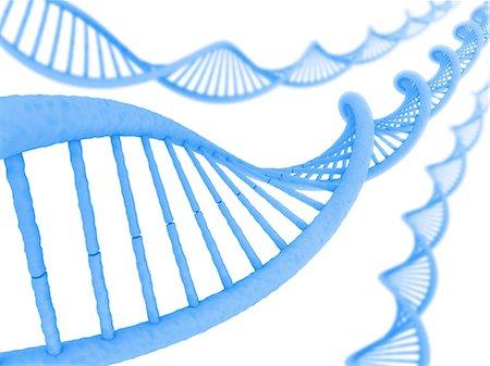 DNA molecules, computer artwork. Stock Photo - Premium Royalty-Free, Code: 679-06781036