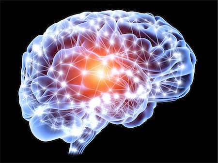 Neural network. Computer artwork of a brain in side view, with the brain's neural network represented by lines and flashes. A neural network is made up of nerve cells (neurons). Stock Photo - Premium Royalty-Free, Code: 679-07151533