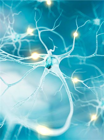 synapse - Active nerve cells, computer artwork. Stock Photo - Premium Royalty-Free, Code: 679-07604260