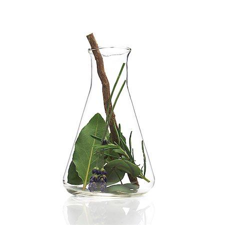 pharmaceutical plant - Medicinal plants, conceptual image. Stock Photo - Premium Royalty-Free, Code: 679-07604343