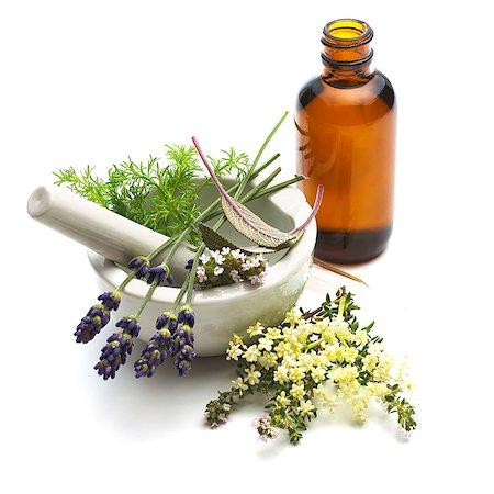 Medicinal plants, conceptual image. Stock Photo - Premium Royalty-Free, Code: 679-07604352