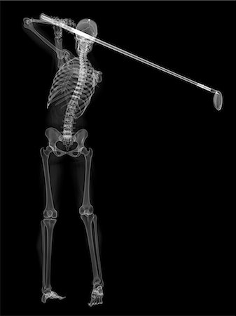 pictures of human skeleton in motion stock photos - page 1, Skeleton