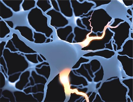 synapse - Neural network, computer artwork. Stock Photo - Premium Royalty-Free, Code: 679-07607710