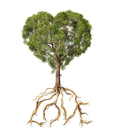 plant (botanical) - Heart-shaped tree, artwork. Stock Photo - Premium Royalty-Free, Code: 679-07607732