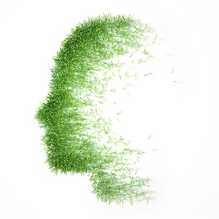 represented - Artwork of grass representing the human mind, psychology concept. Stock Photo - Premium Royalty-Free, Code: 679-07607972