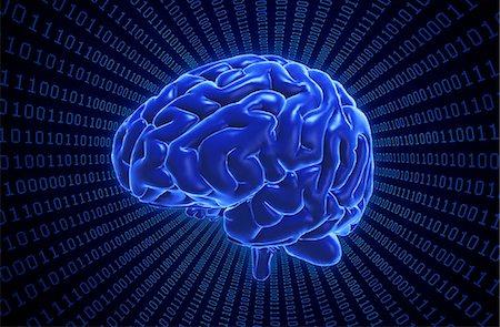 Artwork of the human brain on binary code. Stock Photo - Premium Royalty-Free, Code: 679-07607989