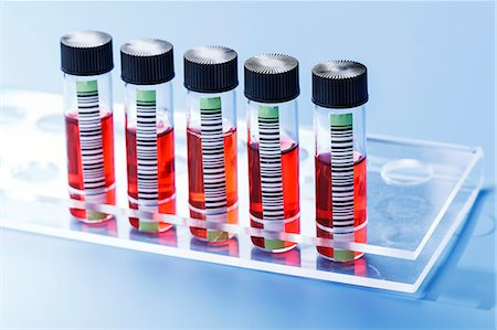 Blood samples in test tube rack. Stock Photo - Premium Royalty-Free, Code: 679-07608192