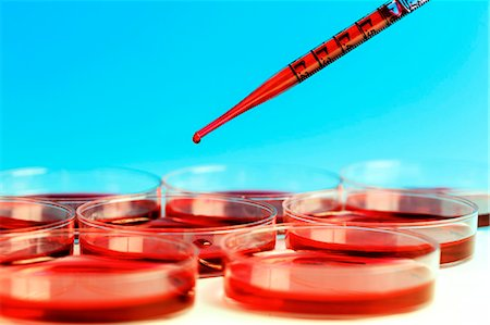 dripping blood - Pipette and petri dishes used for blood testing. Stock Photo - Premium Royalty-Free, Code: 679-07608231