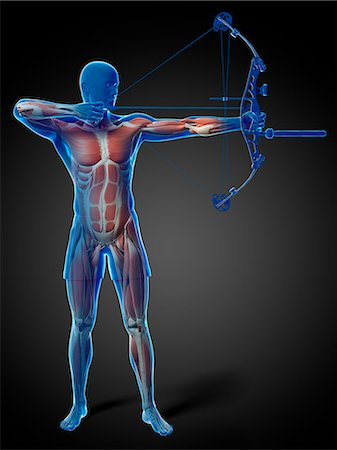 Archer, computer artwork. Stock Photo - Premium Royalty-Free, Code: 679-07603027