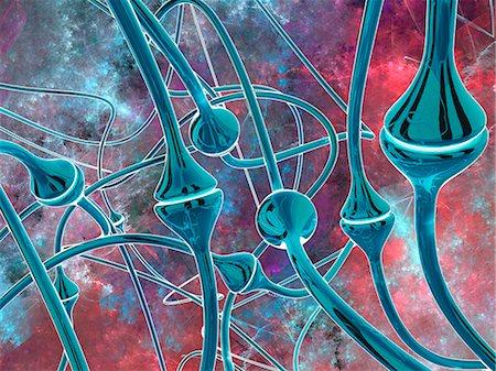 synapse - Synapses, computer artwork. Stock Photo - Premium Royalty-Free, Code: 679-07764867