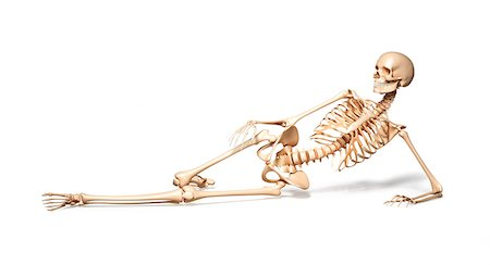 skeleton lying down stock photos - page 1 : masterfile, Skeleton