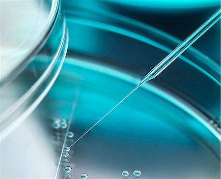 Stem cell research. Nuclear transfer being carried out on several embryonic stem cells used in therapeutic cloning for tissue replacement. Stock Photo - Premium Royalty-Free, Code: 679-07962177