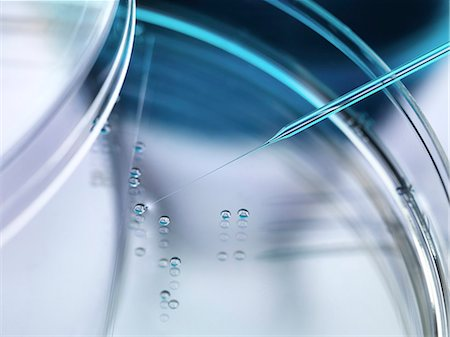 Stem cell research. Nuclear transfer being carried out on several embryonic stem cells used in therapeutic cloning for tissue replacement. Stock Photo - Premium Royalty-Free, Code: 679-07962178