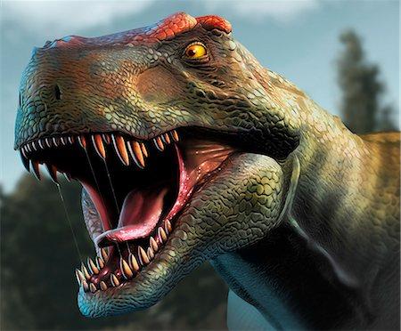 prehistoric - Tyrannosaurus Rex Head Study Stock Photo - Premium Royalty-Free, Code: 679-08031685
