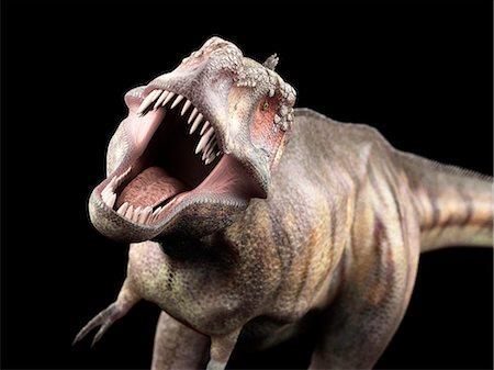 prehistoric - Dinosaur, computer illustration. Stock Photo - Premium Royalty-Free, Code: 679-08121770