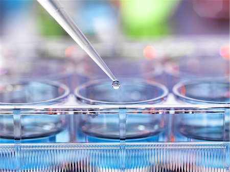 Pipetting sample into multiwell plate for analysis in a laboratory. Stock Photo - Premium Royalty-Free, Code: 679-08426062
