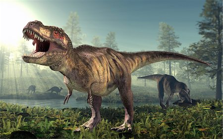prehistoric - Tyrannosaurus rex dinosaur, artwork. Stock Photo - Premium Royalty-Free, Code: 679-03679420