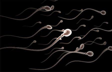 sperme - Sperm Stock Photo - Premium Royalty-Free, Code: 671-02099499
