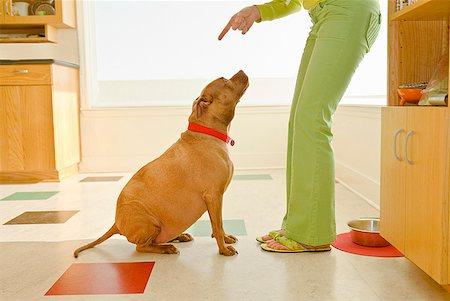 Woman scolding dog Stock Photo - Premium Royalty-Free, Code: 673-02143741