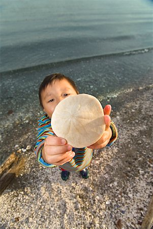 Asian boy holding up sand dollar Stock Photo - Premium Royalty-Free, Code: 673-02143931