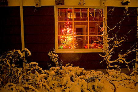 snow covered trees - House in winter with Christmas Tree visible in window Stock Photo - Premium Royalty-Free, Code: 673-02801423
