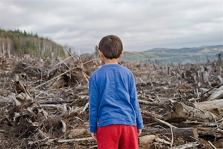 Young boy looking out at cleared landscape of fallen trees Stock Photo - Premium Royalty-Free, Code: 673-02801431
