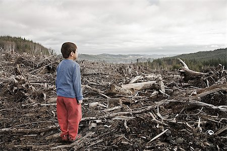 Young boy looking out at cleared landscape of fallen trees Stock Photo - Premium Royalty-Free, Code: 673-02801432