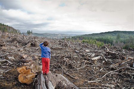 Young boy looking out at cleared landscape of fallen trees Stock Photo - Premium Royalty-Free, Code: 673-02801433
