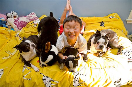 boy on bed with dogs and toys Stock Photo - Premium Royalty-Free, Code: 673-03623301