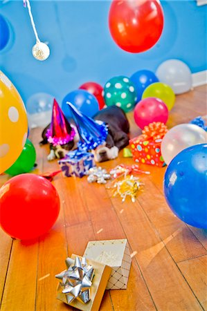 dogs in party hats with balloons Stock Photo - Premium Royalty-Free, Code: 673-03826603