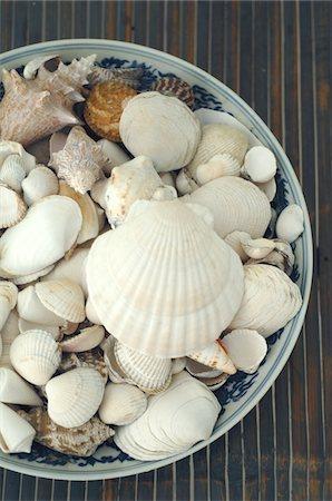 decoration pattern - Decorative seashells Stock Photo - Premium Royalty-Free, Code: 689-05611417