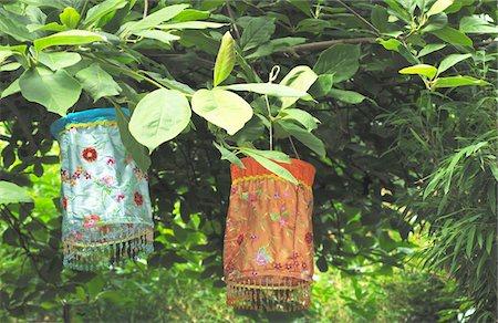 Two paper lanterns hanging on branch Stock Photo - Premium Royalty-Free, Code: 689-05611506