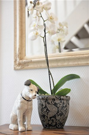 decorative - Orchid and dog figurine on dresser Stock Photo - Premium Royalty-Free, Code: 689-05612420
