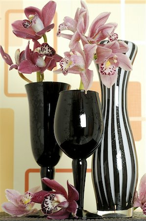 Orchids in vases Stock Photo - Premium Royalty-Free, Code: 689-05612595