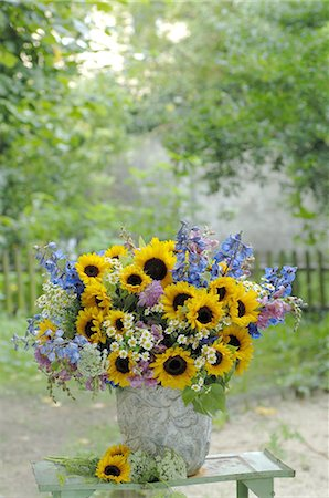 Bunch of flowers with sunflowers Stock Photo - Premium Royalty-Free, Code: 689-03733611