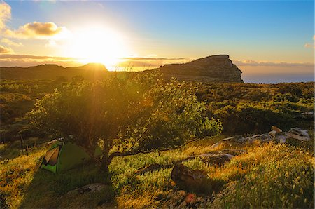 Hiking tent under apple tree, Table Mountain National Park, Cape Town, Western Cape, South Africa Stock Photo - Premium Royalty-Free, Code: 682-06374058
