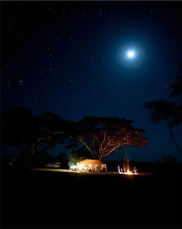 Camping under fever tree and full moon, Laikipia, Kenya Stock Photo - Premium Royalty-Free, Code: 682-06374153