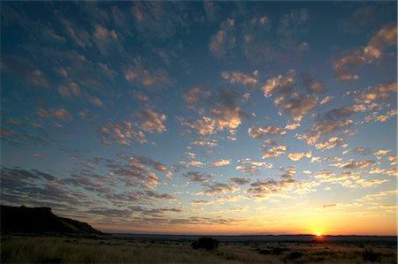 Sunsetting on Horizon in a Bushveld Scene Stock Photo - Premium Royalty-Free, Code: 682-02892790