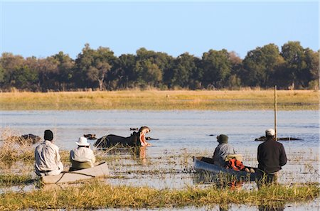 Tourists on safari in Botswana view hippos from a dug-out canoe (mokoro) Stock Photo - Premium Royalty-Free, Code: 682-02892838
