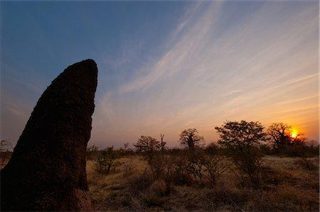 Termite mound in the sunset, Makgadigadi, Botswana Stock Photo - Premium Royalty-Free, Code: 682-03285671
