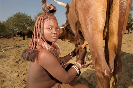 Close up of a Himba women milking cow, Epupa Falls area, Kaokoland, Namibia Stock Photo - Premium Royalty-Free, Code: 682-03285685