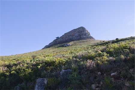 Lions Head Mountain, sister peak to Table Mountain, South Africa Stock Photo - Premium Royalty-Free, Code: 694-03333048