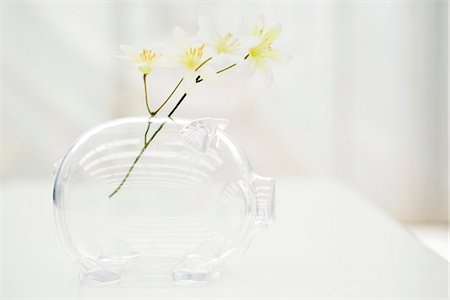 Flowers in piggy bank Stock Photo - Premium Royalty-Free, Code: 695-05770545