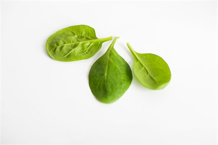 Fresh baby spinach Stock Photo - Premium Royalty-Free, Code: 695-05771762